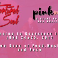 Tortured Soul Live @ Pinknic Music Festival 2017